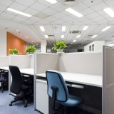 effective-indoor-plants-that-clean-the-air-in-your-office