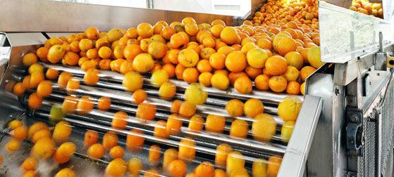 pl13223619-engery_saving_orange_juice_production_industrial_orange_juice_machine_iso_ce